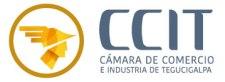 logo_ccit